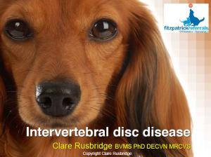 IVDD_slides_-_Clare_R