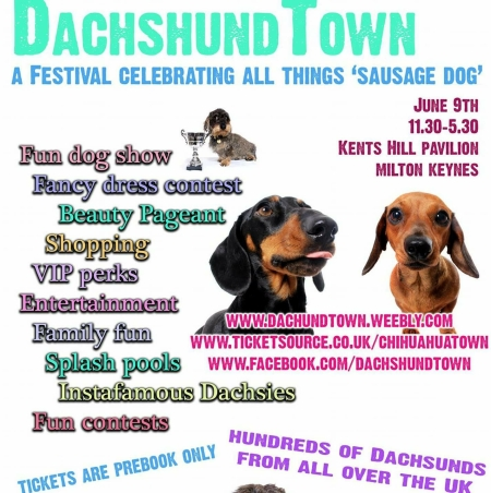 Dachshund Town 2018.png