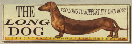 The long dog.png