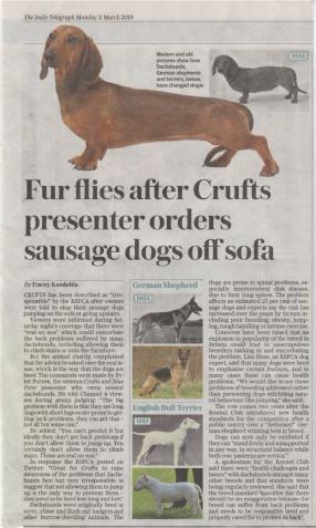 Crufts 2019 Telegraph.png