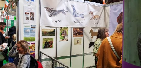 Discover Dogs Crufts 2019 (1).jpg