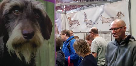 Discover Dogs Crufts 2019 (2).jpg
