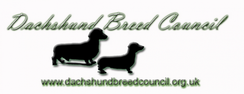 The Dachshund Breed Council UK